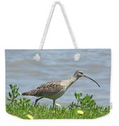 Long Billed Curlew At Palacios Bay Tx Weekender Tote Bag