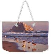 Long Billed Curlew - Morro Rock Weekender Tote Bag