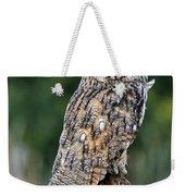 Long-eared Owl 4 Weekender Tote Bag