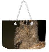 Long-eared Owl Asio Otus Weekender Tote Bag