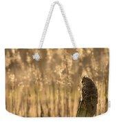 Long-eared Owl Weekender Tote Bag