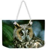 Long-eared Owl Up Close Weekender Tote Bag