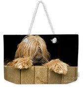 Long-haired Dog Weekender Tote Bag