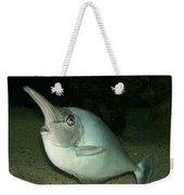 Long Nose Fish Weekender Tote Bag