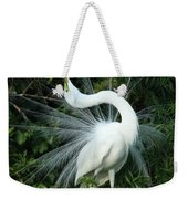 Look At Me Weekender Tote Bag by Sabrina L Ryan