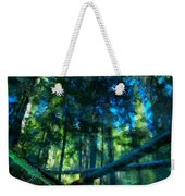 Look Into The Reflection Weekender Tote Bag