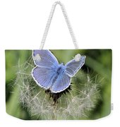 Looking For Nectar In All The Wrong Places Weekender Tote Bag