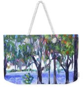 Looking Out On The Bay Weekender Tote Bag