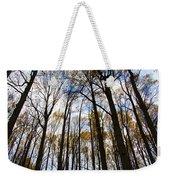 Looking Skyward Into Autumn Trees Weekender Tote Bag