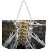 Looking Up At The Sagrada Familia In Barcelona Weekender Tote Bag