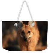 Looks Like A Fox Weekender Tote Bag