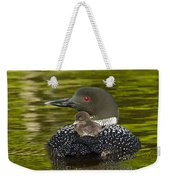 Loon Chick Rides On A Parents Back Weekender Tote Bag