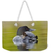 Loon Chick Resting On Parents Back Weekender Tote Bag