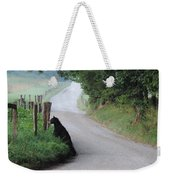 Lost Bear Cub In Cades Cove Weekender Tote Bag