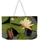 Lotus Flower In White Weekender Tote Bag