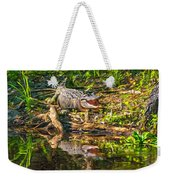 Louisiana Bayou 2 - Paint Weekender Tote Bag