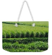 Louisiana Cane Field Weekender Tote Bag