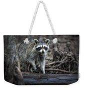 Louisiana Raccoon II Weekender Tote Bag