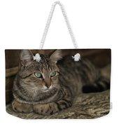 Lounging Cat Weekender Tote Bag