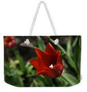 Love Tulip Time Weekender Tote Bag