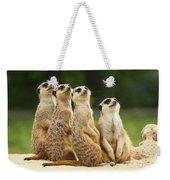 Lovely Group Of Meerkats Weekender Tote Bag