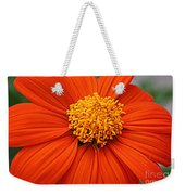 Lovely In Orange - Mexican Daisy Weekender Tote Bag