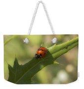 Lovely Lady Bug Weekender Tote Bag