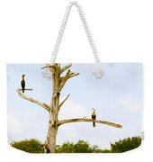 Low Angle View Of Cormorants Weekender Tote Bag