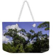 Lowcountry Life Oaks Weekender Tote Bag