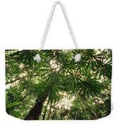 Lowland Tropical Rainforest Fan Palms Weekender Tote Bag