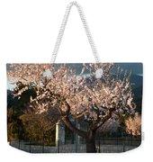 Luminous Almond Tree Weekender Tote Bag
