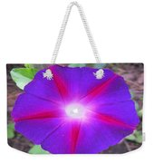 Luminous Morning Glory In Purple Shines On You Weekender Tote Bag