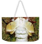 Luna Moth Actias Luna Weekender Tote Bag