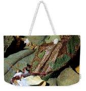 Luna Moth Emerging From Cocoon Weekender Tote Bag