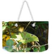 Luna Moth In The Sun Weekender Tote Bag