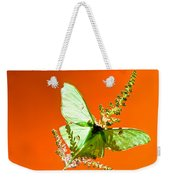 Luna Moth On Astilby Orange Back Ground Weekender Tote Bag