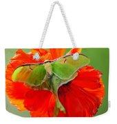 Luna Moth On Poppy Square Format Weekender Tote Bag