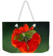 Luna Moth Orange Poppy Green Bg Weekender Tote Bag