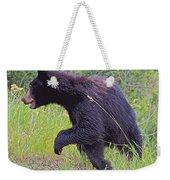 Lunging Black Bear Near Road In Grand Teton National Park-wyoming   Weekender Tote Bag