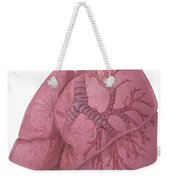 Lungs And Bronchi Weekender Tote Bag