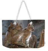 Lynx Trio Weekender Tote Bag