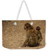 Macaque Monkeys Weekender Tote Bag