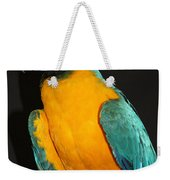 Macaw Hanging Out Weekender Tote Bag