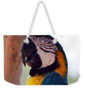 Macaw Head Study Weekender Tote Bag
