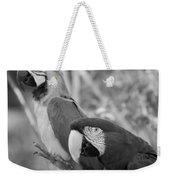 Macaws Of Color B W 14 Weekender Tote Bag