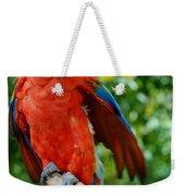 Macaws Of Color30 Weekender Tote Bag
