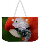 Macaws Of Color32 Weekender Tote Bag
