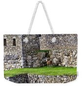 Machu Picchu - Grazing Lamas Weekender Tote Bag