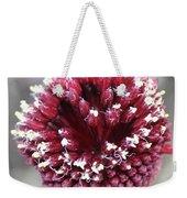 Macro Of Round-headed Leek Flower Allium Sphaerocephalon  Weekender Tote Bag
