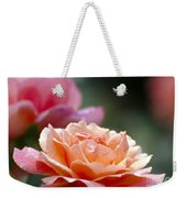 Macro Orange And Pink Floribunda Rose Weekender Tote Bag